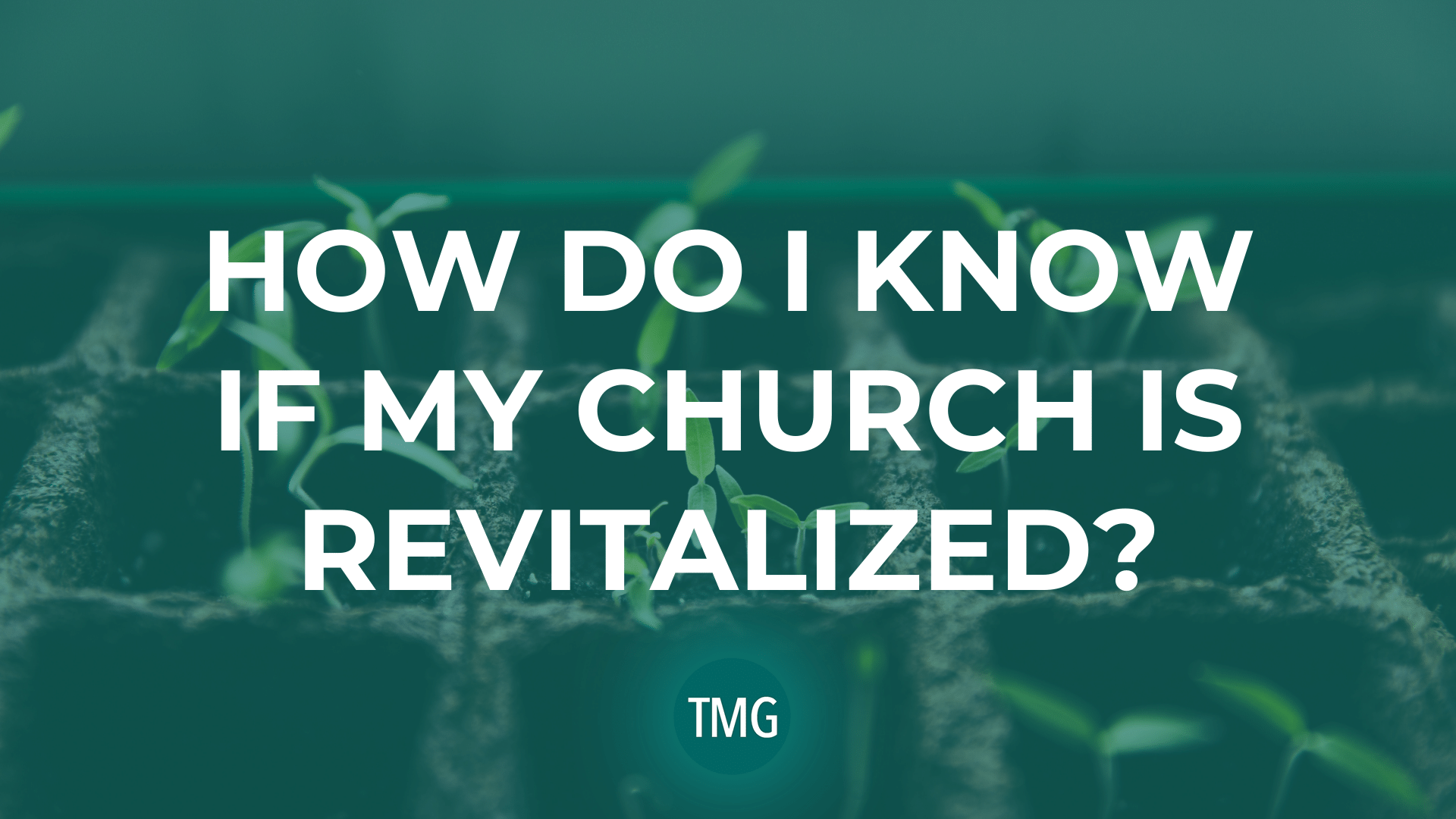 how-do-i-know-if-my-church-is-revitalized-the-church-revitalization-podast-malphurs-group-header-image